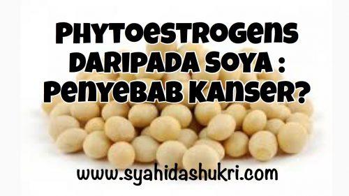 Phytoestrogen soya penyebab kanser