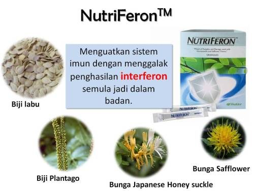 Kandungan Nutriferon yang turut mengandungi Biji Labu