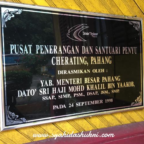 Pusat Santuari Penyu, Cherating