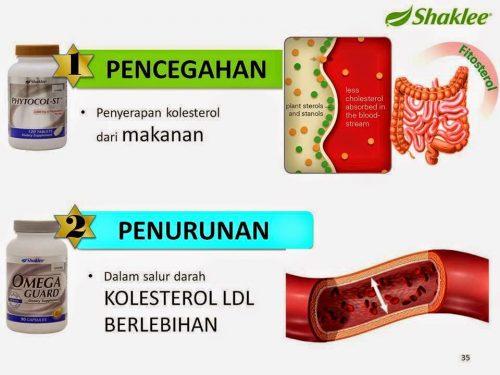 Set Kolestrol Shaklee : Phytocol-ST dan OmegaGuard