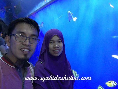 Kenangan di Kaiyukan Aquarium, Osaka.