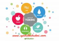 Sumber-sumber toksin yang memasuki badan kita