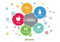 Detox bukan sekadar untuk kurus